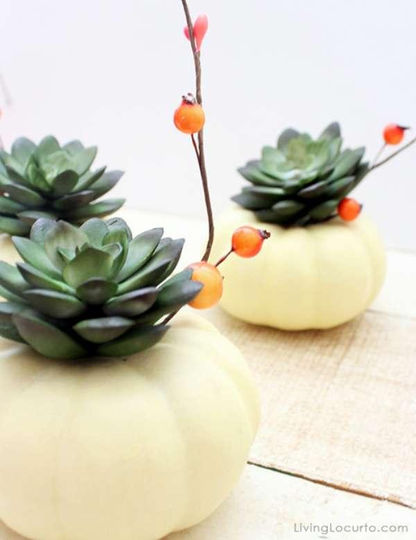 calabazas-decorar-suculentas
